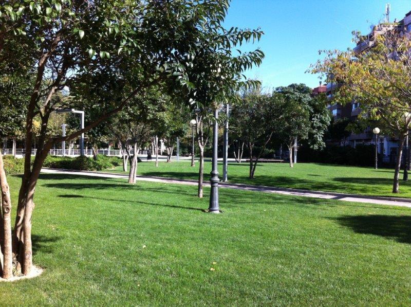 Ajardinamiento en Parque Miguel Servet de Huesca